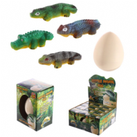 Reptile Hatching Egg
